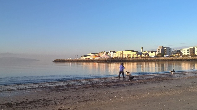 Image result for salthill beach